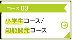コース 03 小学生 コース /知能開発 コース
